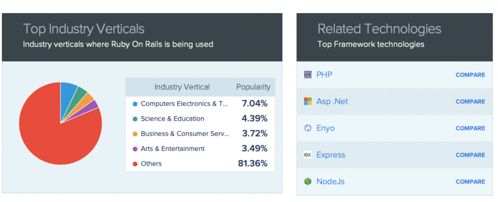 market share diversification of Ruby on Rails in multiple areas