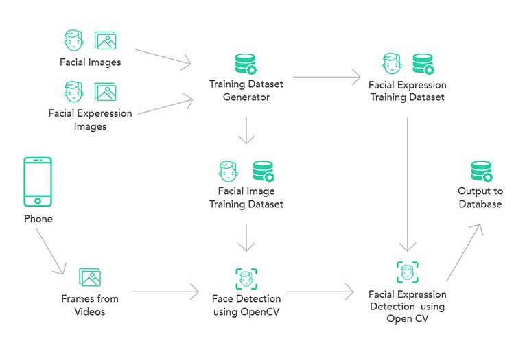 Video Processing & Facial Expression Analysis case study