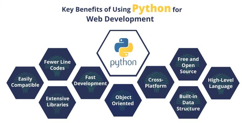 Best python development services